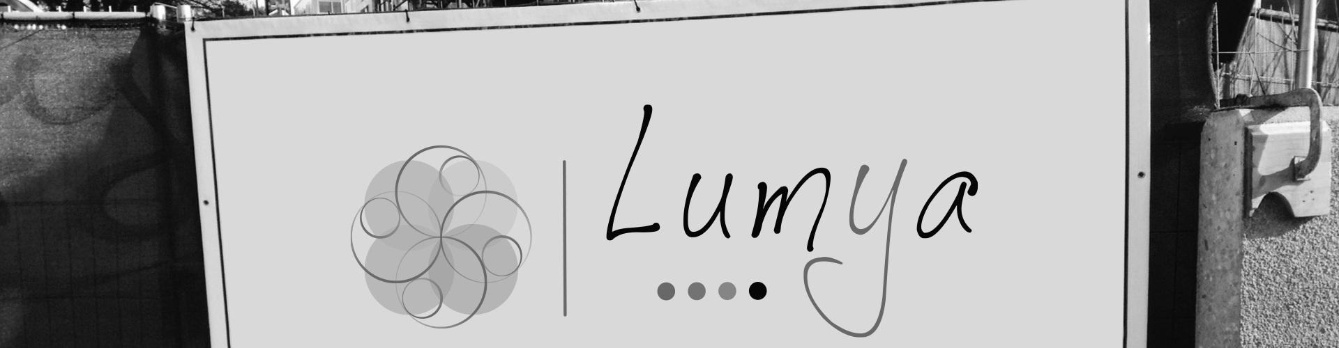 Bâche de chantier Lumya